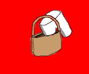 a pelvic purse