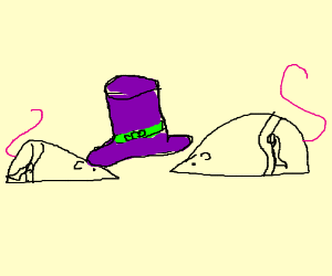 2 karate mice want to share a weird hat