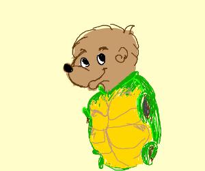 berenstain bear in turtle shell