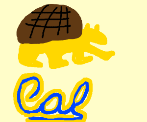 Berenstain Bear in a turtle shell