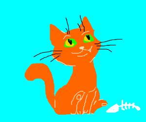 A sassy cat
