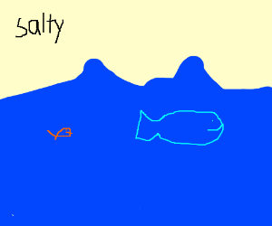 OCEAN!!!!!
