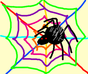 Spider making colorfull web