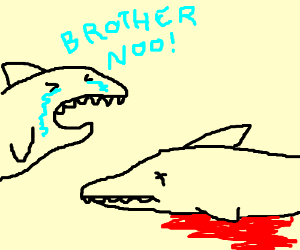 Shark cries over his dead brother (Too sad)