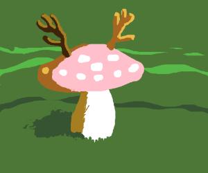 Mushroom with antlers