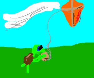 turtle with a kite