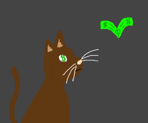 All brown cat sees is money