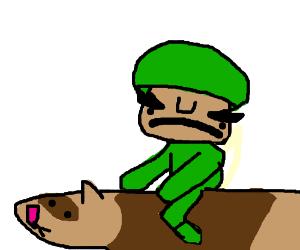 Solder rides giant ferret