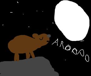 Brown bear howls at the moon