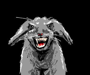 Evil bunny rabbit