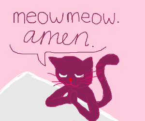Purple cat is praying.