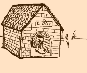 A boot in the dog house