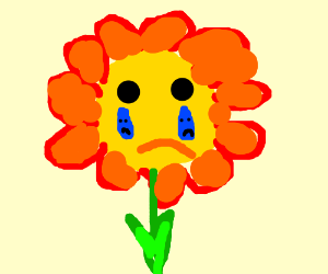 Flower Is Crying The Tears Have Faces