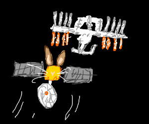 Bunny satelite collides with the ISS
