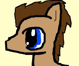 A pony with one very big eye