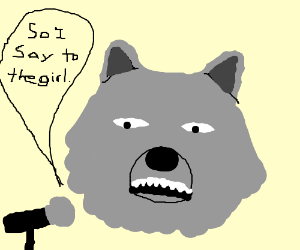 Wolf does stand-up comedy