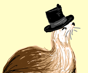 top hat otter