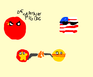 Vietnam VS USA