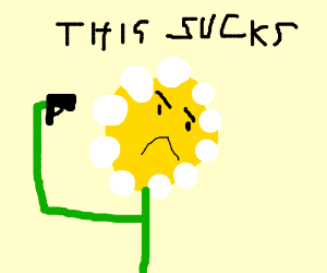 A flower questions his existence