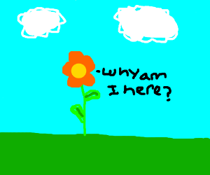 Existential flower