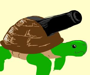 Turtle Cannon