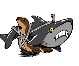 Attached seal and shark