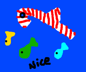 Candy Cane Fish