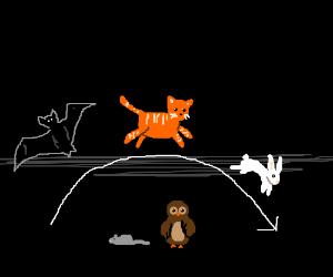 rabbit/cat/bat jumps over mouse/owl