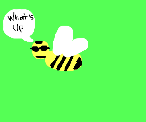 Cool bee asks what's up.
