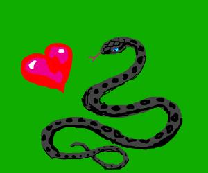 Snake gets a heart