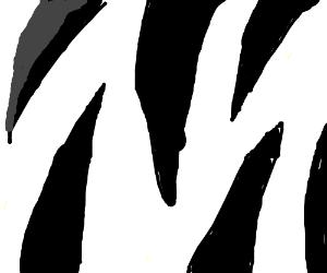 Close-up view of a zebra pattern.