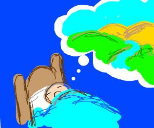 guy dreams about landscape