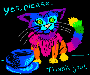 Rainbow cat is surprisingly well mannered