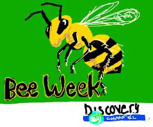 Bee Week yes discovery channel