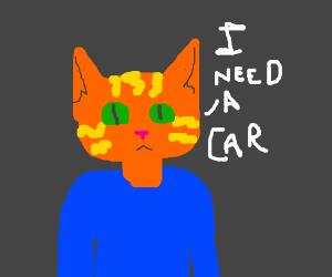 Cat man needs a car