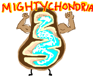 Mitochondria is the powerhouse of the cell