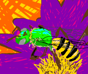 A BEE! on a lovely purple flower.