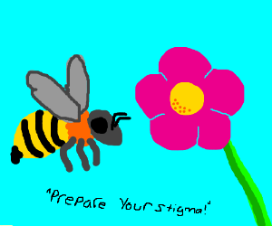 Bee to flower: Prepare your stigma