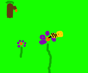 Bee 'pollinates' flower