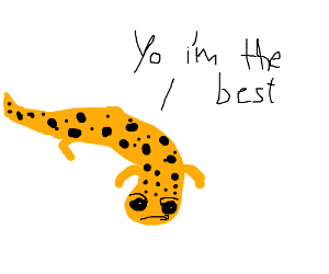 A salamander thinks it's the best