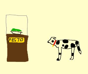No pesto for Pongo.