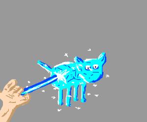 Ice-Wizard freezes cat
