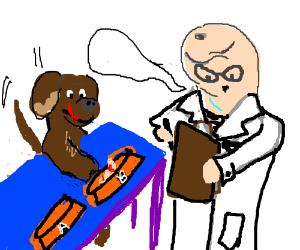 Phallic headed man discusses food w dog