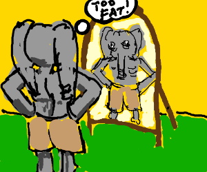 Anorexic elephant thinks it's fat