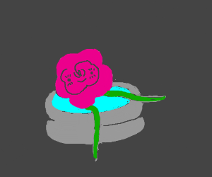 Happy flower in tiny swimming pool