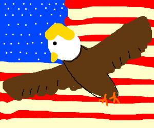 Donald Trump saves America.