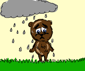 Bear is upset because the rain soaked his fur