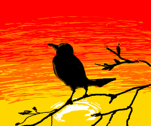 bird in front of sunset