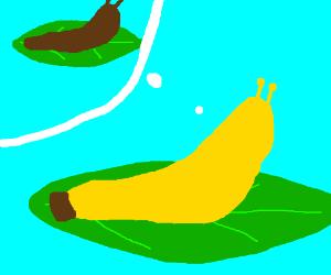 Banana thinks he's a slug. Mind blown.
