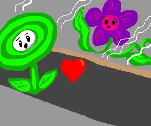 Poison flower(Mario) meets love @ flower shop.